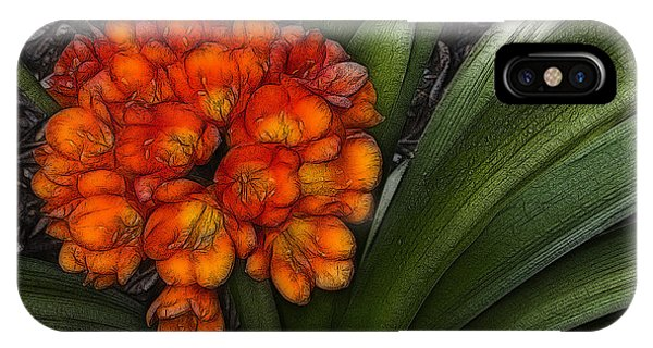 Clivia IPhone Case