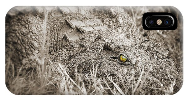 Crocodile iPhone Case - Close Crocodile  by Delphimages Photo Creations