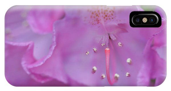 Close Up Of Inside Of Rhododendron Flower  Phone Case by Dan Friend