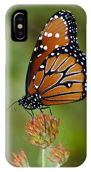 Close-up Pose IPhone Case