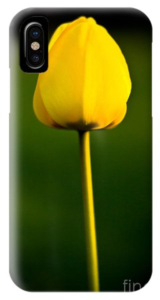 Closed Yellow Flower IPhone Case
