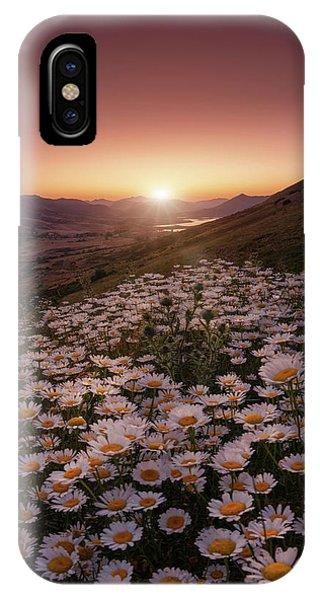 Daisy iPhone X Case - Closer To The Sun by Sergio Abevilla