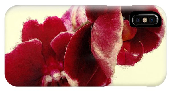 Closeup Of Flowering Burgundy Orchid IPhone Case