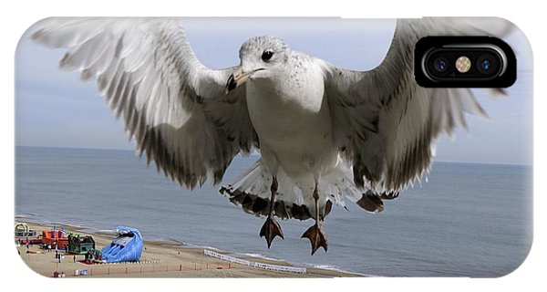 Closeup Of Hovering Seagull IPhone Case