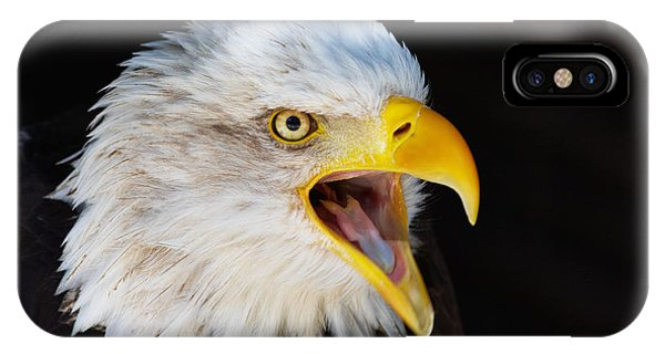 Closeup Portrait Of A Screaming American Bald Eagle IPhone Case