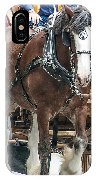 Clydesdale On Parade  IPhone Case