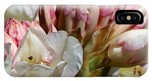 Coast Rhododendron IPhone Case
