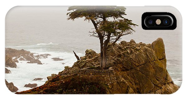 Coastline Cypress IPhone Case