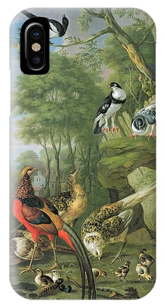 Magpies iPhone Case - Cock Pheasant Hen Pheasant And Chicks And Other Birds In A Classical Landscape by Pieter Casteels