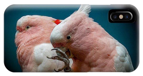Cockatoos IPhone Case