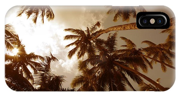 Coconut Palms IPhone Case