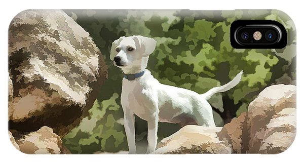Cody On The Rocks IPhone Case