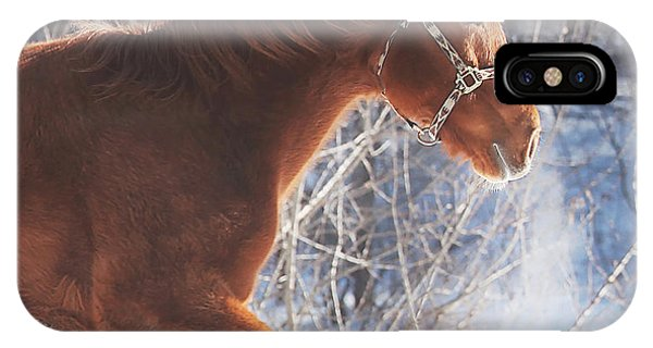 Winter iPhone Case - Cold by Carrie Ann Grippo-Pike