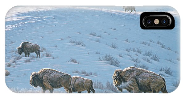 Yellowstone iPhone Case - Cold Day At Lamar by Paul Krapf