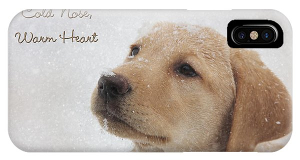 Cute Puppy iPhone Case - Cold Nose Warm Heart by Lori Deiter