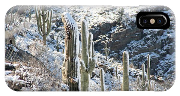 Cold Saguaros IPhone Case