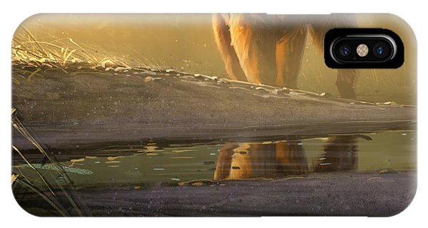 Cold Sunrise IPhone Case
