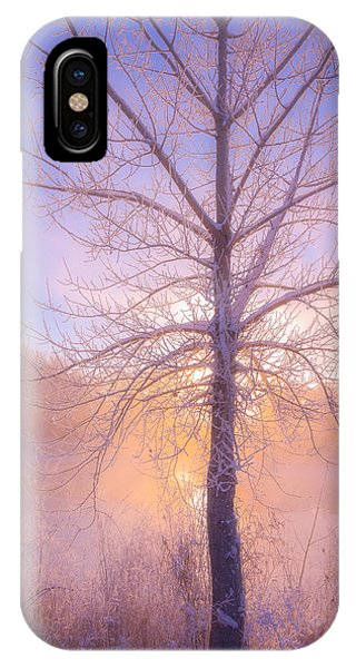 Cold Winter Morning IPhone Case