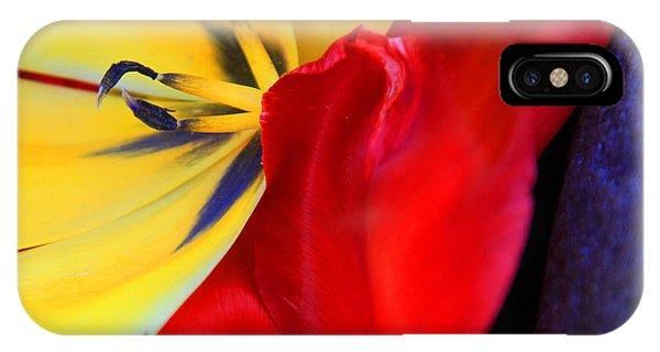 Color Kiss IPhone Case
