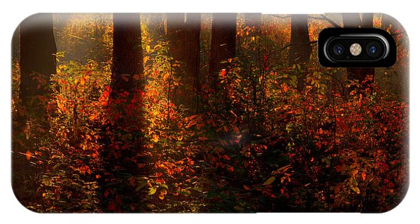 Color On The Forest Floor IPhone Case