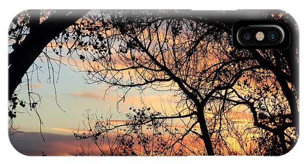 Color Through The Trees IPhone Case