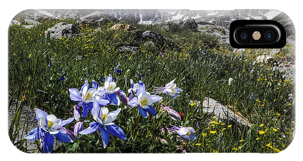 Colorado Columbines IPhone Case