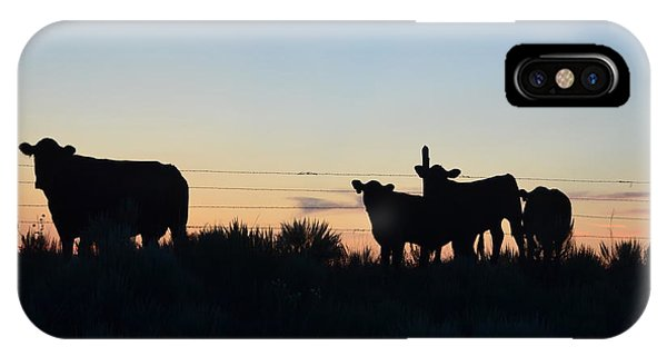 Colorado Cattle Silhouettes IPhone Case