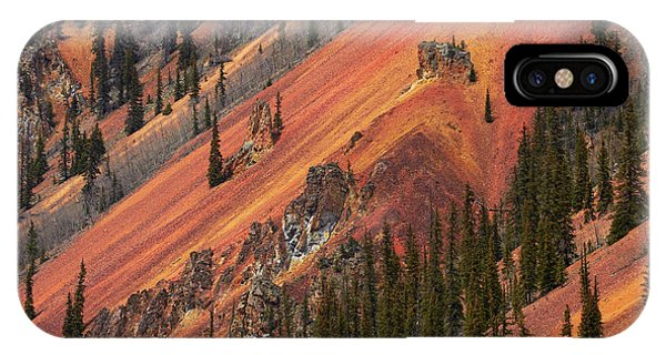 Anvil iPhone Case - Colorado, San Juan Mountains, Trees by David Wall