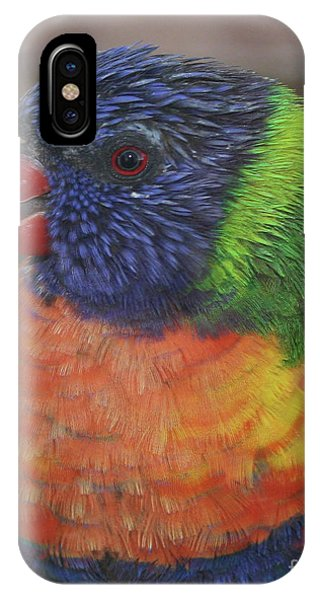 iPhone Case - Colored Feathers by Kelly Holm