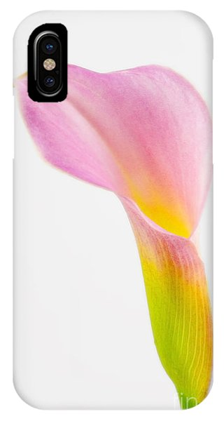Colorful Calla Lily Flower IPhone Case