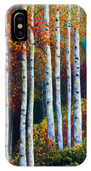 Colorful Colordo Aspens IPhone Case