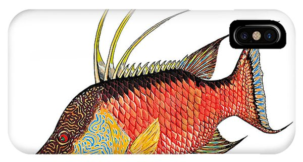 Colorful Hogfish IPhone Case