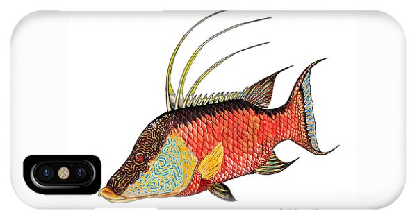 IPhone Case featuring the painting Colorful Hogfish by Steve Ozment