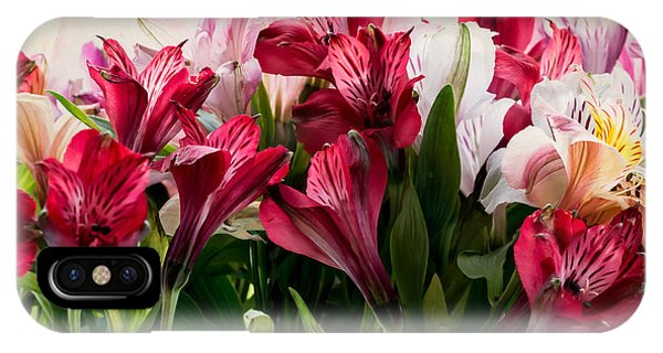 Colorful Peruvian Lillys IPhone Case