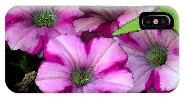 Colorful Petunias IPhone Case
