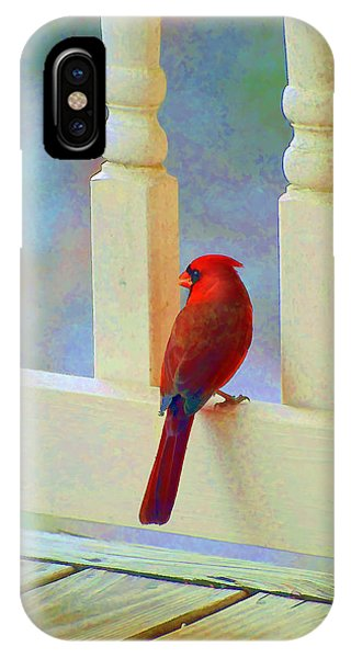 Colorful Redbird IPhone Case