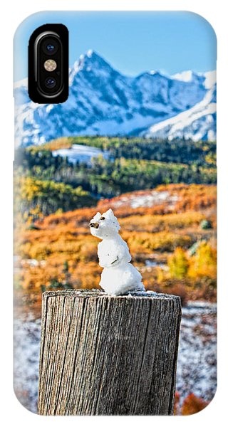 Colorful Snow Cat IPhone Case