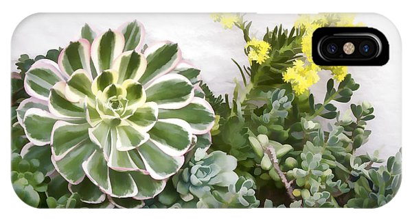 IPhone Case featuring the digital art Colorful Succulents by Photographic Art by Russel Ray Photos