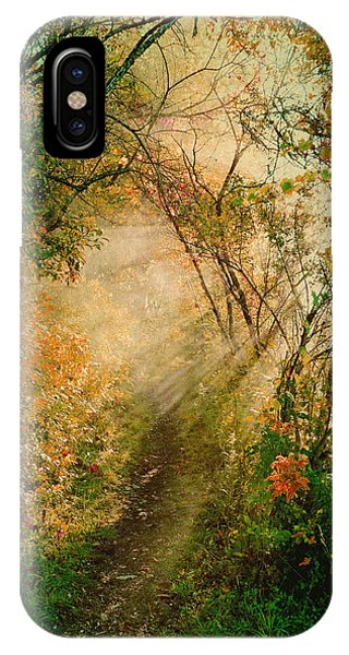 Colorful Sunlit Path IPhone Case