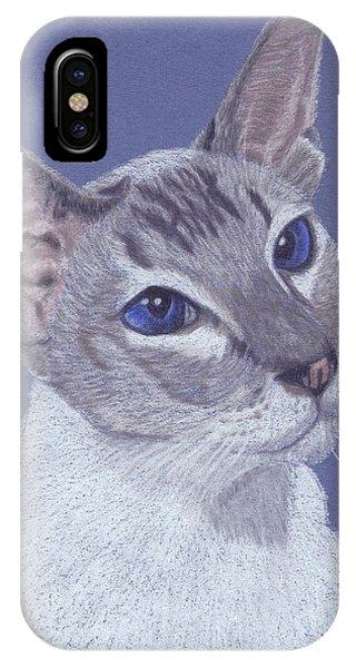 Colorpoint Vignette IPhone Case