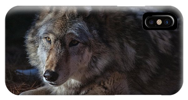 Colors Of A Wolf IPhone Case
