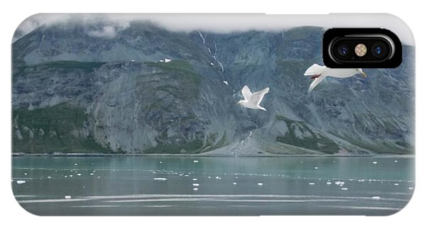 Colors Of Alaska - Glacier Bay IPhone Case