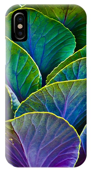 Colors Of The Cabbage Patch IPhone Case