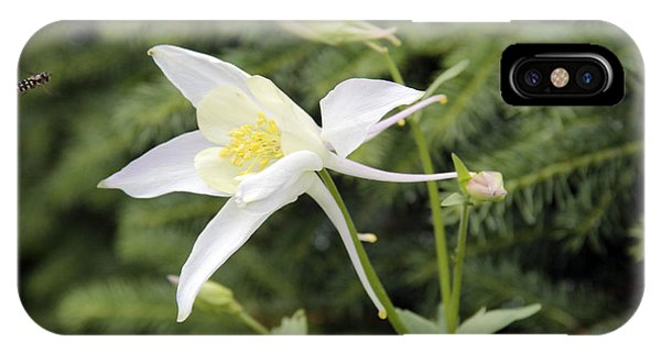 Columbine And The Bee IPhone Case