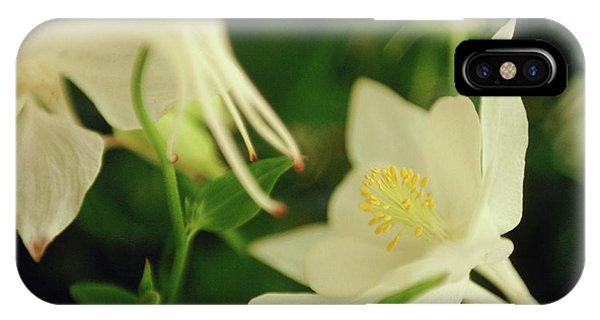Aquilegia iPhone Case - Columbine (aquilegia 'white Dove') by Rachel Warne/science Photo Library