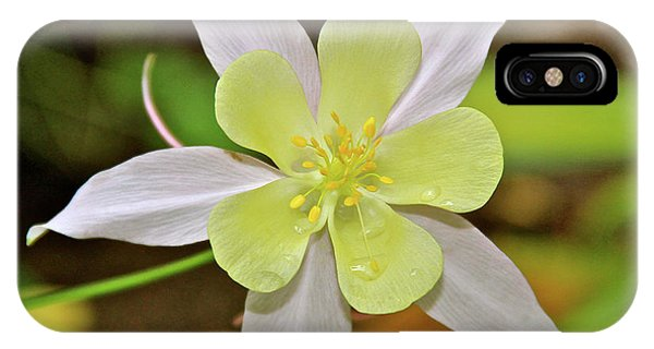 Columbine Charlie's Garden IPhone Case