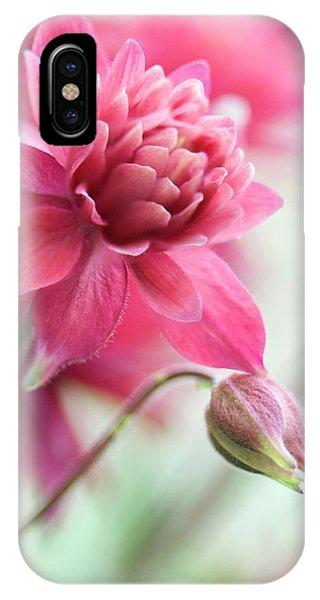 Aquilegia iPhone Case - Columbine 'clementine Rose' by Maria Mosolova