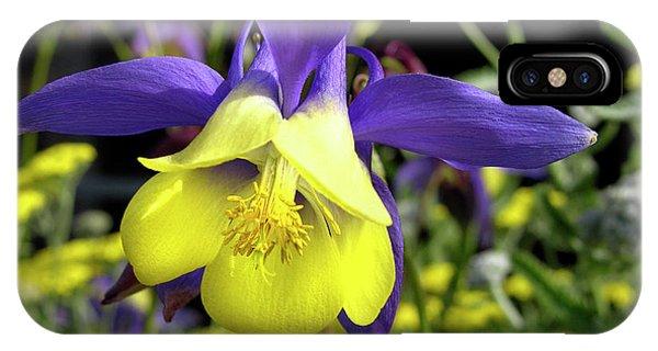 Aquilegia iPhone Case - Columbine Flower (aquilegia Sp.) by Tony Craddock/science Photo Library