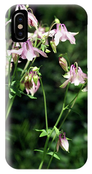 Aquilegia iPhone Case - Columbine Flowers (aquilegia Skinneri) by Brian Gadsby/science Photo Library
