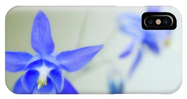 Aquilegia iPhone Case - Columbine Flowers (aquilegia Sp.) by Maria Mosolova/science Photo Library